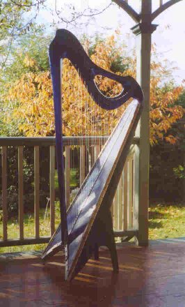 """Metatron"" 36-string harp"